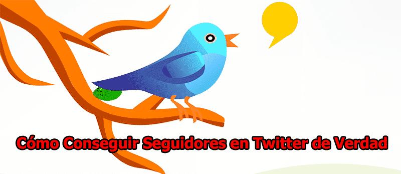 como-conseguir-seguidores-en-twitter